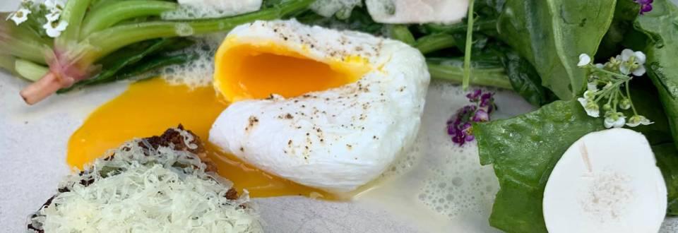 Pocheret æg med champignon, sprødt brød og krystalliseret ost